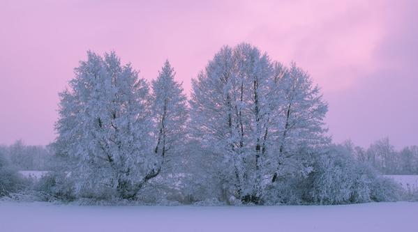 paleta de colores que toda mujer necesita en invierno